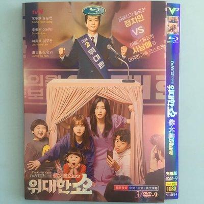 高清DVD 高清韓劇  偉大的Show  /宋承憲 李先彬 繁體中字DVD影碟