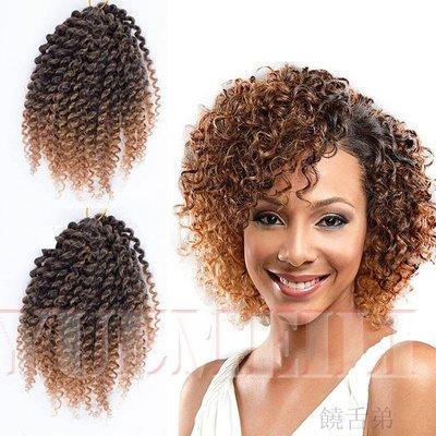 新品~現貨~Afro Kinky Curly Twist Marley Crochet Braids Hair 臟辮 假