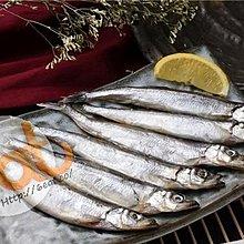 加拿大多春魚   Canadian Capelin