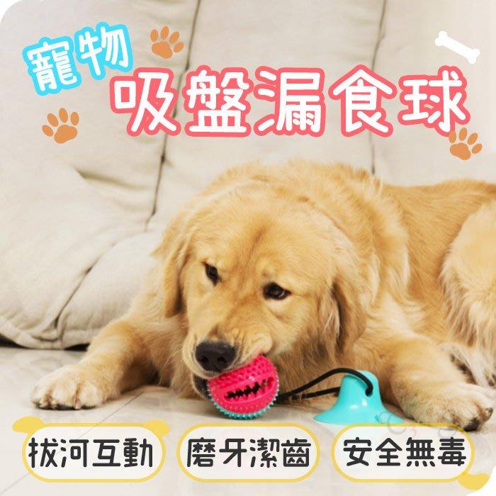 【T3】寵物吸盤球 零食球 TPR玩具球 潔牙 磨牙 啃咬 吸盤 無毒 餵食 寵物玩具 寵物用品【HP20】