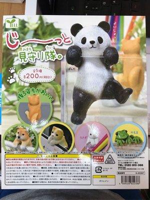 特價 全新 Yell 動物 杯緣子 熊貓 狗仔 貓仔 兔仔 青蛙 扭蛋 共5款