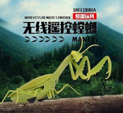 省很多~遥控螳螂. 红外線遥控電子螳螂.創意仿真遙控昆蟲.整人螳螂玩具.