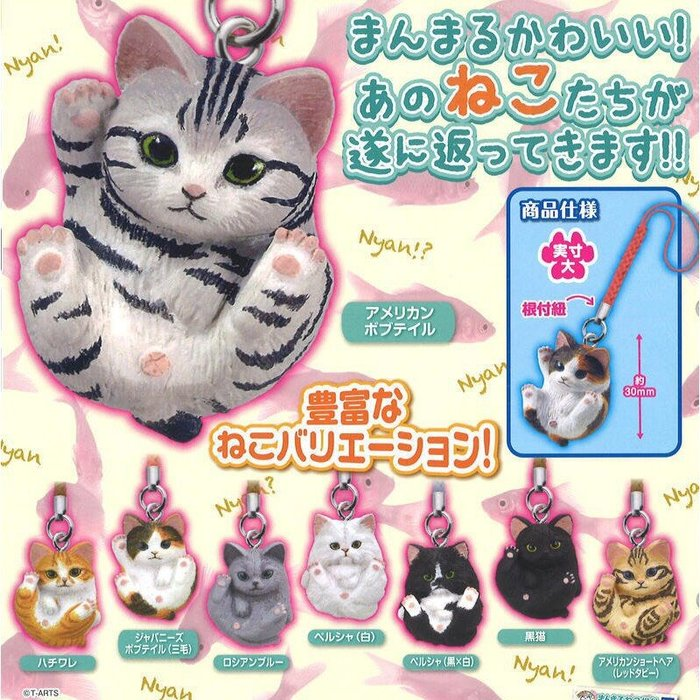 T-ARTS 轉蛋 扭蛋 圓滾滾可愛動物 圓圓可愛貓咪吊飾 貓咪 根付 圓滾滾 全8種