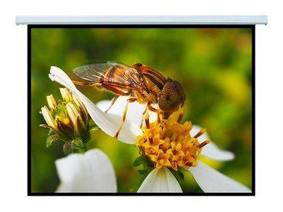 【愛瑪吉】台灣製 電動 蓆白 投影機 布幕 投影 銀幕 84x84 100吋 隨貨贈遙控器