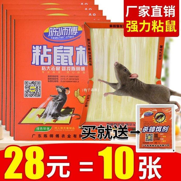 {桃子森林} 老鼠貼超強力粘鼠板加大加厚居家用實惠裝加誘餌抓大老鼠神器陳師傅