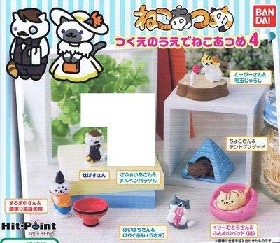 【一手動漫】 日本正版 貓咪收集桌上小物 4代 轉蛋 扭蛋 貓咪收藏 小全6種