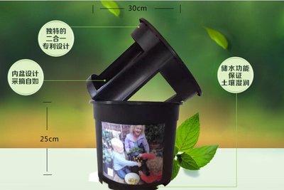 馬鈴薯種植盆,(生薑,花生,番薯都可適用)陽台室內蔬菜盆,可享自然田野種植樂
