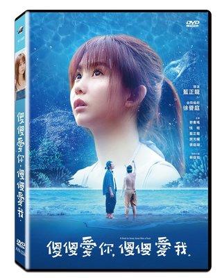[DVD] - 傻傻愛你,傻傻愛我 A fool in love, love l ( 飛行正版 ) - 預計4/24發行