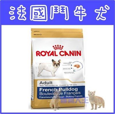 **貓狗大王**法國皇家‧法國鬥牛成犬‧FMB24‧3kg