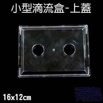 Y。。。青島水族。。。QY-02伸縮式上部 環型雙雨淋 抽屜式滴流盒 迷你 便當盒 台製多層式可用==上蓋16*12cm