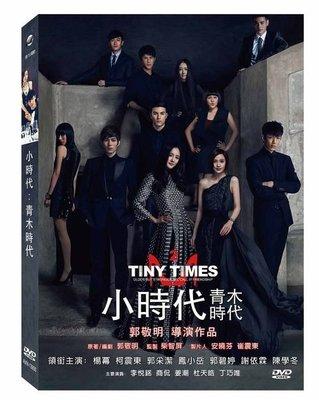 DVD 小時代2 青木時代  柯震東、郭采潔、鳳小岳, Tiny Times II 正版 大陸電影