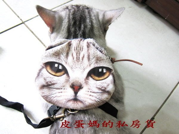 【貓頭包】書包☆狗自背包-貓背包-寵物包(美短/蘇摺/藍貓/虎斑)貓臉/喵星人-大眼貓送牽繩