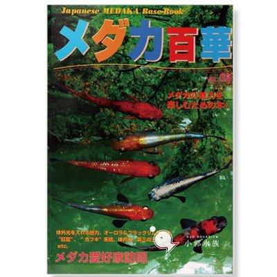 小郭水族-日本雜誌【稻田魚百華圖鑑vol.6】MEDAKA 名家訪談 愛好者訪談