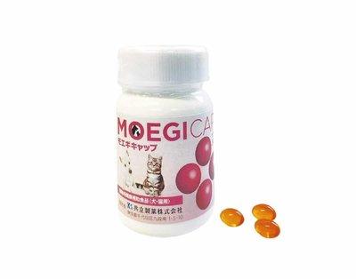 (免運)(可聊)貝節益 共立製藥 犬貓專用 綠貽貝 魚油 關節 心血管 皮膚保養 30顆膠囊/50粒錠狀