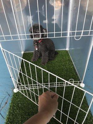 【寵物鐵網門框】可開門 單片 寵物圍欄...