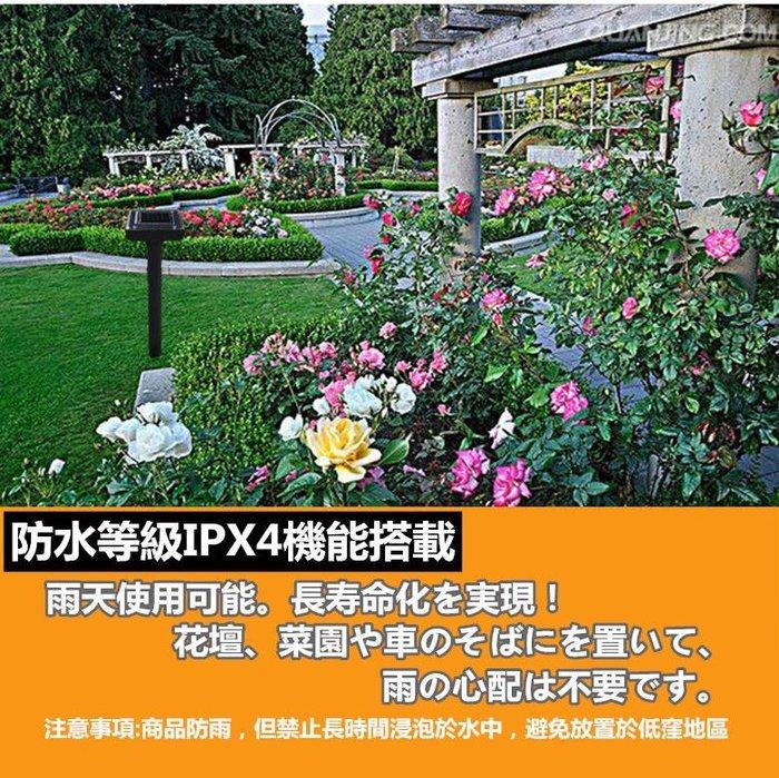 太陽能燈 花園 果樹 園藝 戶外 園林 花園 庭院 燈插 地燈 景觀