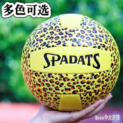 運動排球學生中考5號軟式氣排球沙灘男女大室內外比賽訓練用球 EY6824【】