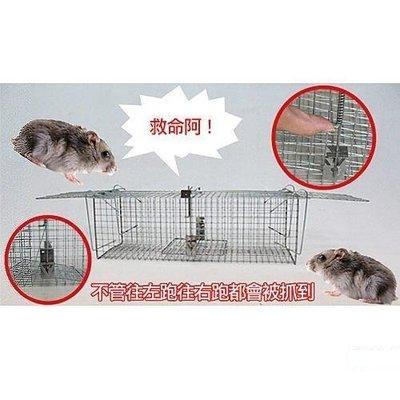 總捉踏式捕鼠籠4個入 S40 捕鼠瓶 捕鼠器 鼠籠 捕貓 補狸籠 捕蛇籠 / 郵寄出貨