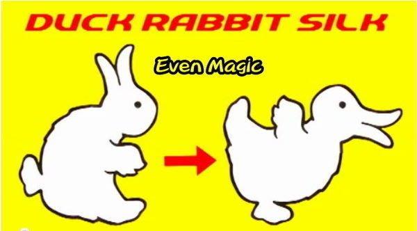 【意凡魔術小舖】Duck Rabbit Silk兔鴨換變 鴨兔幻變 兔鴨瞬變絲巾魔術 才藝表演 舞台魔術