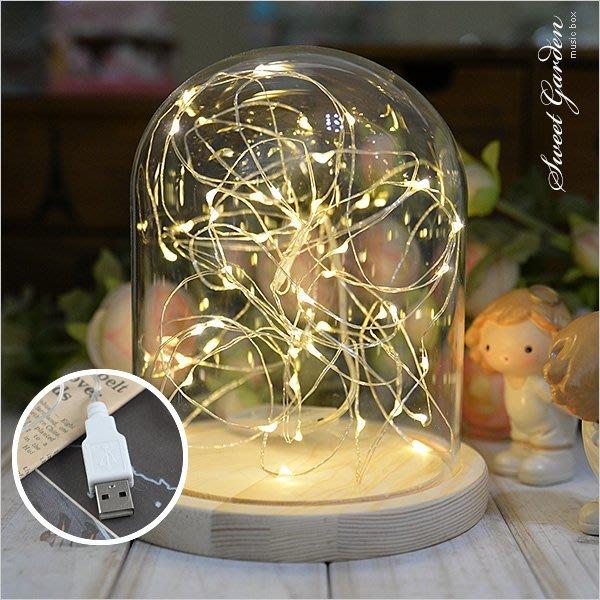 Sweet Garden, 5米50燈 LED銀線燈串 暖白光迷你燈珠 USB插頭 可簡易塑形 DIY火樹銀花禮物