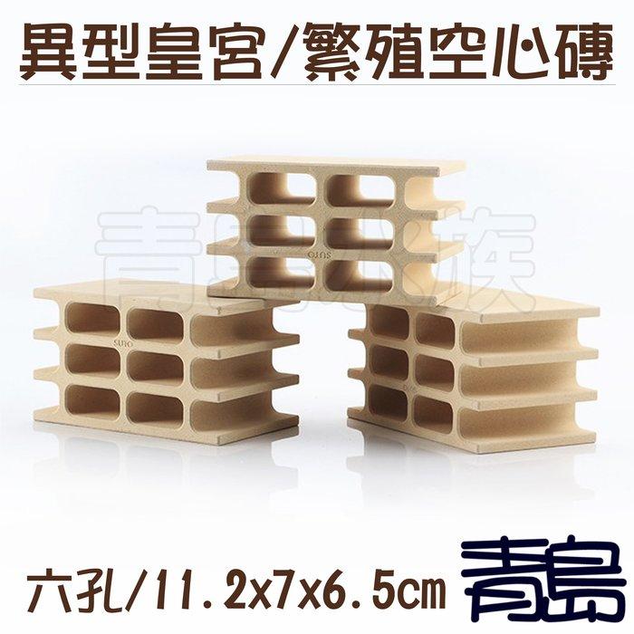 Y。。。青島水族。。。ST-668白色力量-異型用繁殖白磚 異型磚 空心磚 白宮 水晶蝦短鯛鼠魚躲藏裝飾==六孔皇宮/小