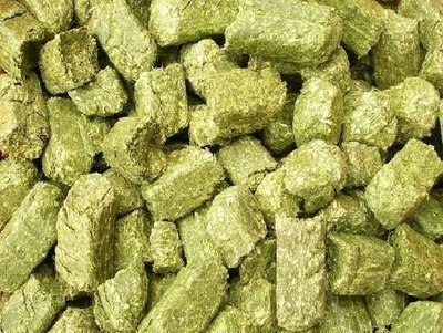 *優比寵物* 優質加拿大進口牧草磚《5公斤》/牧草塊 --促銷優惠價--