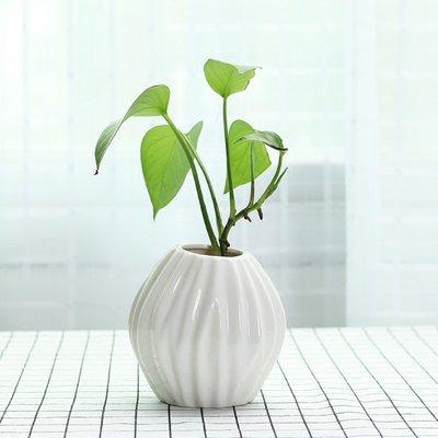 爆款迷你小清新花瓶陶瓷簡約白色辦公桌面裝飾品干花綠植插花水培容器#簡約#陶瓷#小清新