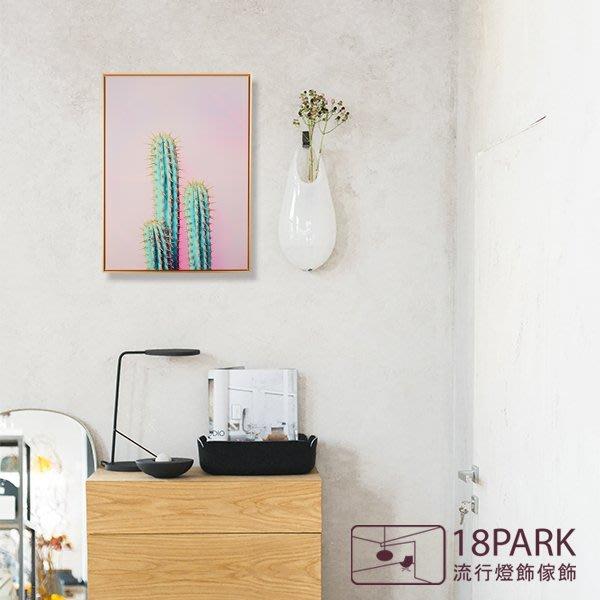 【18Park 】精緻細膩 cactus [ 畫說-Fun仙人掌-40*60cm(粉紅) ]