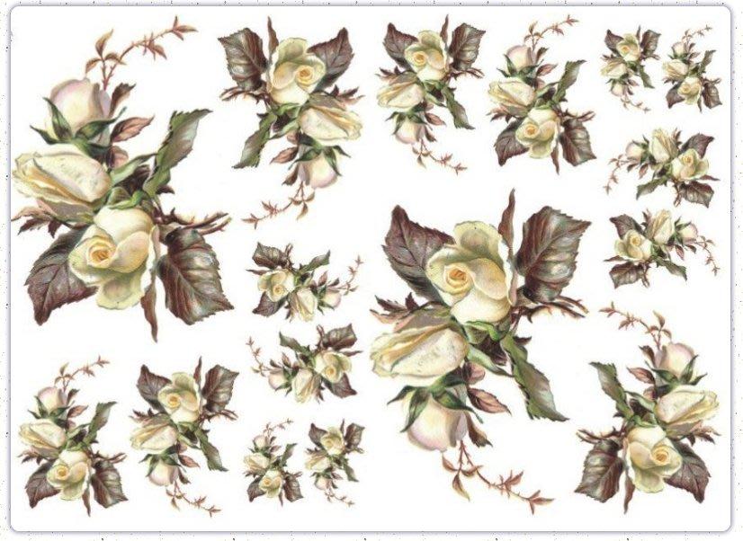 波蘭 Decoupage Paper(專用紙)A3編號PL-D-0351~蝶古巴特 餐巾紙拼貼 彩繪 黏土DIY手作材料