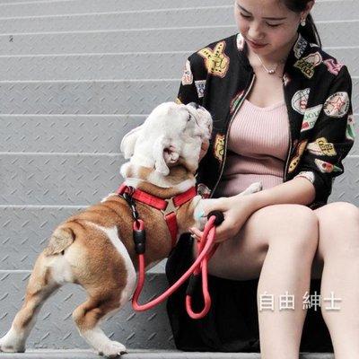 狗鍊子小型犬遛狗繩寵物牽引繩幼犬金毛用品泰迪博美胸背帶拴狗
