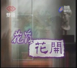 花開花落DVD~岳翎.焦恩俊.秦漢主演~