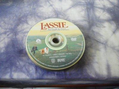 紫色小館-55-4-------LASSIE