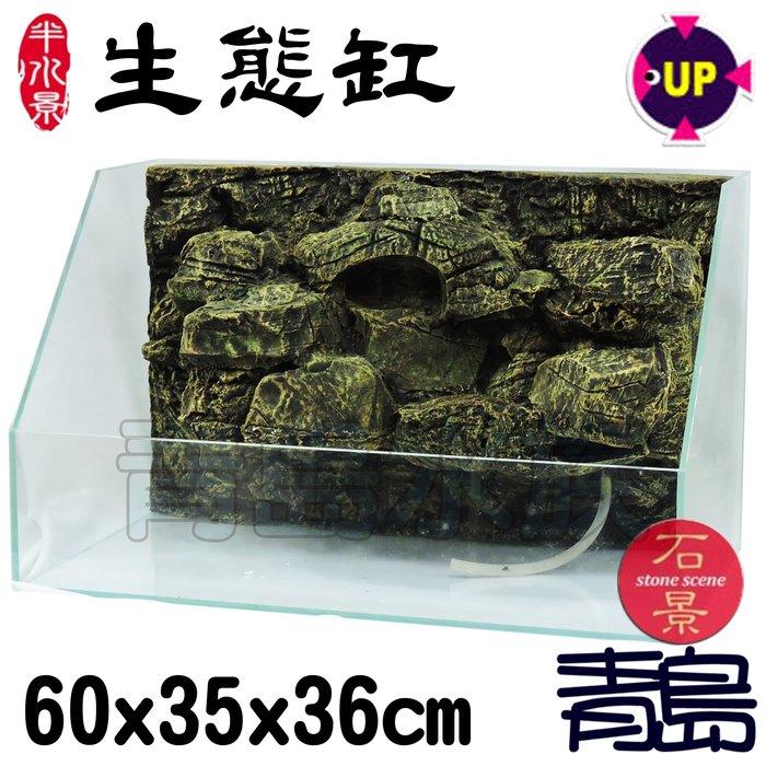 AA。。。青島水族。。。TK-SA-60-YS台灣UP雅柏-半水景生態缸 石景==(3D岩板)60*35*36/黃色
