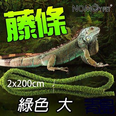 Y。。。青島水族。。。NN-02-L中國NOMO諾摩-藤條造景 藤蔓 攀爬 兩棲爬蟲 樹蛙 蜥蜴==綠色2*200cm