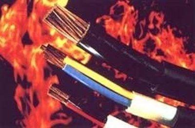 【 阿原水電倉庫 】宏泰 5.5mm平方 * 2C 2芯 電纜線 PVC絕緣電纜線 100公尺(1丸) 充實型 電纜