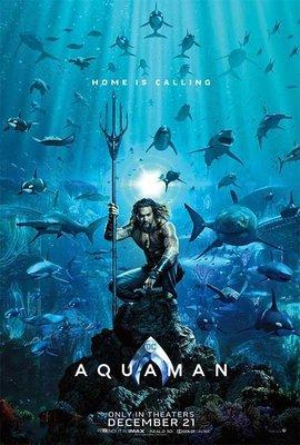 水行俠 (Aquaman)- 溫子仁、傑森摩莫亞Jason Momoa- 美國原版雙面電影海報 (2018年預告版)