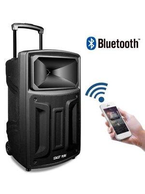 先科 ST1502W廣場舞藍芽音響播放機拉桿行動戶外音箱家用K歌帶無線話筒