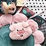 【現貨】超可愛小豬包~~~~豬年必備 小物...