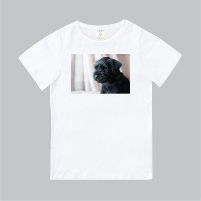 T365 MIT 親子 童裝 情侶 T恤 T-shirt 短T 狗 DOG 汪星人 馬爾濟斯 瑪爾濟斯 Maltese