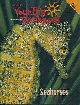 美國自然科學雜誌(青少年)Your Big Backyard: Seahorses 海馬