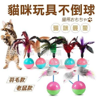 貓玩具 羽毛不倒球 老鼠不倒球 貓玩具 貓玩耍 貓咪推薦 寵物用品 寵物玩具 喵星人 貓咪 貓奴必備 貓咪最愛