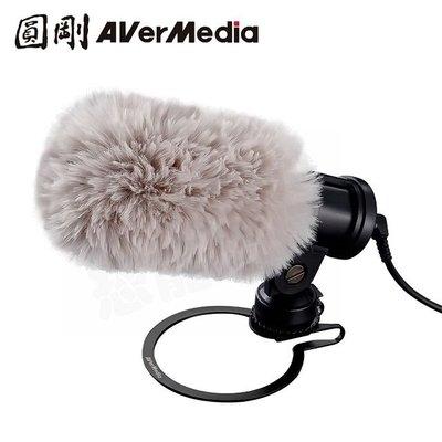 AVERMEDIA AM133 圓剛 外接式 收音麥克風 LIVE STREAMER MIC 指向性麥克風 相機 直播