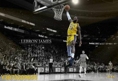 LeBron James 霸氣外露爆扣海報