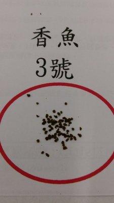 香魚飼料 3號 (1公斤/包) /孔雀魚飼料/小型魚飼料/七彩神仙飼料
