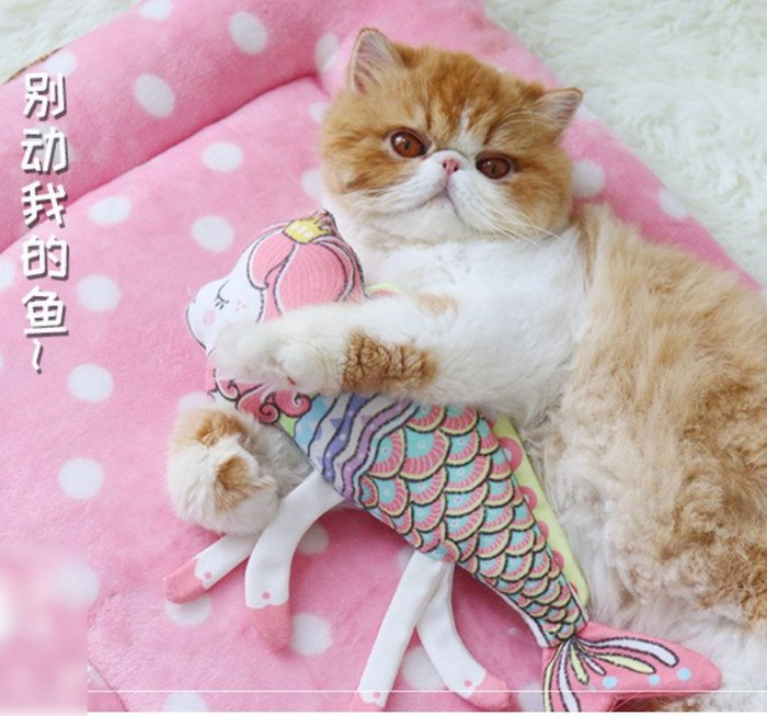 貓玩具抱枕 貓薄荷貓草玩具逗貓棒貓咪玩具貓咪抱枕_☆優購好SoGood☆
