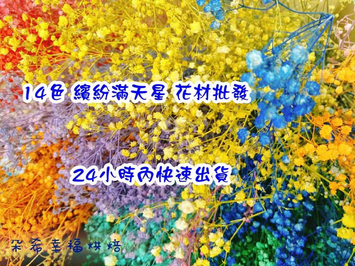 ✿花材批發✿14色 繽紛 彩色 滿天星 現貨供應  乾燥花  拍照道具 攝影道具  不凋花 永生花 朵希幸福烘焙
