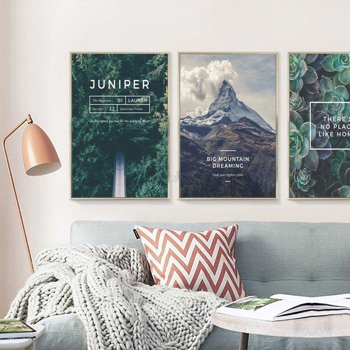 三幅一組油畫布 植物山峰綠樹 畫芯/畫布/30X40☺暖暖屋☺傢居藝術館