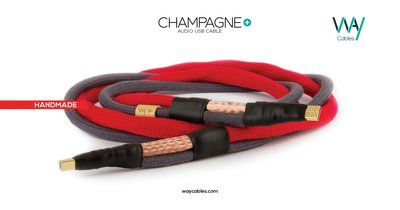 WAYCables CHAMPAGNE+ 5N單晶銀 Audio USB Cable 歡迎來電洽詢