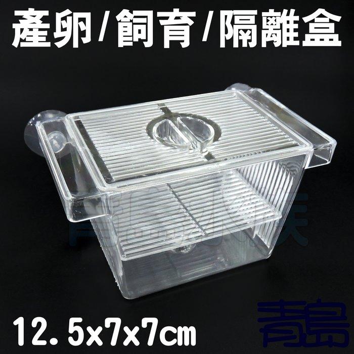 三月缺Y。青島水族。F-177-S佳力仕  ALEAS 金利佳 雅柏 XL 鐳力 水世界-產卵盒 飼育盒 隔離盒=S