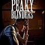 浴血黑幫(1-5季)(5片裝) Peaky Blinders Season(現貨)